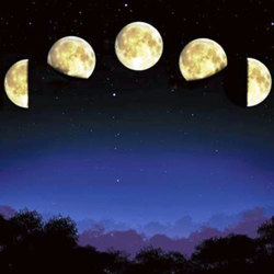 image of the moon phases