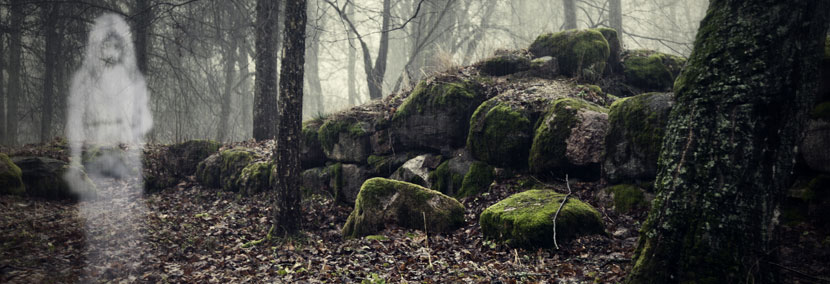 image of child ghost in the forest