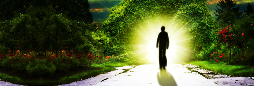 image of a psychic approaching the garden of eden