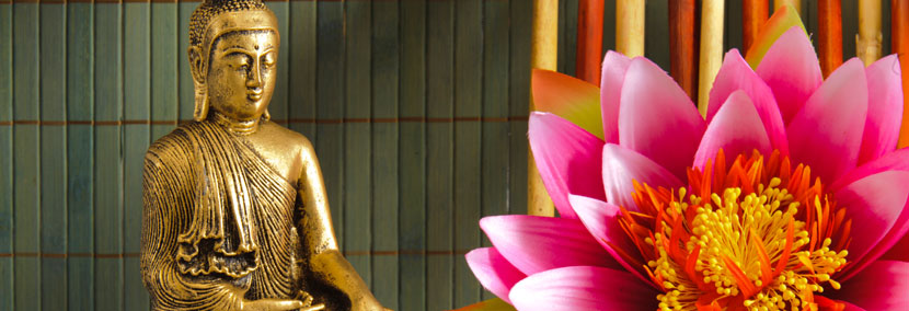 image of tao buddha and pink orchid