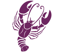 image of a crab representing cancer starsign