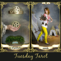 image of a hand holding the pentacles representing the ace of pentacles