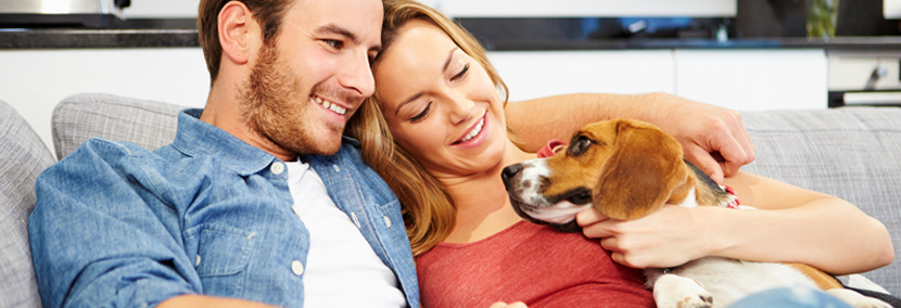 image of a happy couple on the couch with their happy dog