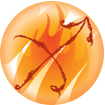 Sagittarius Fire Sign